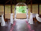 Wedding Path Rose Petals