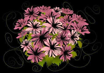 Abstract pink asters with dark background