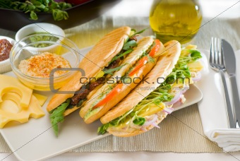 assorted panini sandwich
