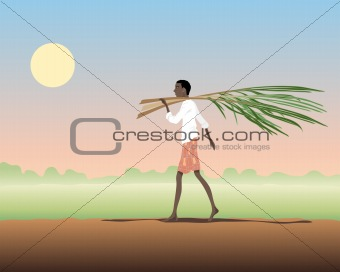 carrying sugar cane