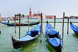 gondolas on San Marco Canal, Venice