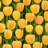 tulip-seamless-background