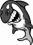 Killer Whale Mascot Cartoon