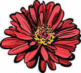 red flower. Maj.