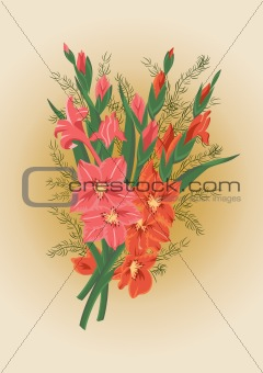 Bouquet of pink and red gladiolas