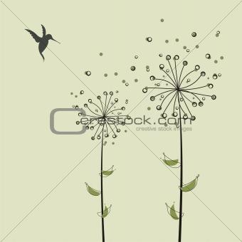gentle dandelions