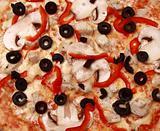 mushroom pizza background(142).JPG