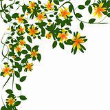 Border floral