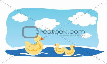 Duck and ducklings swimming in water