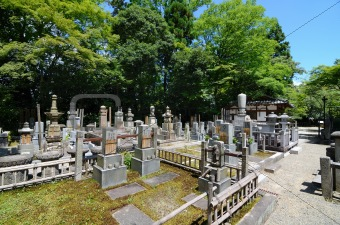 Ancient Japanese Cemetery