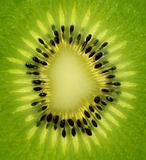 Fresh kiwi slice
