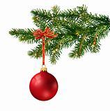 Red glass ball on Christmas tree