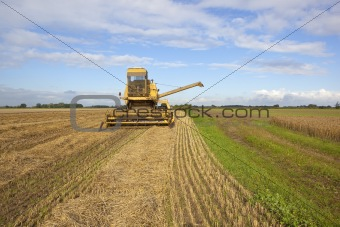 old yellow harvester