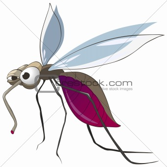 Cartoons_0051_Mosquito_Vector