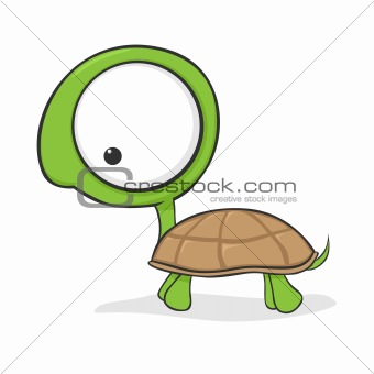 Big-eyed turtle