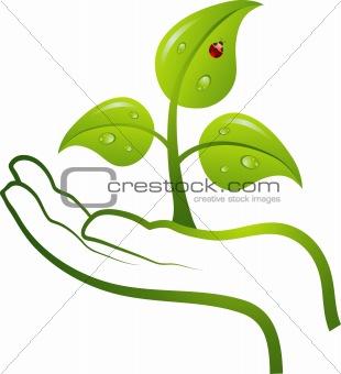 Green life in hand, vector