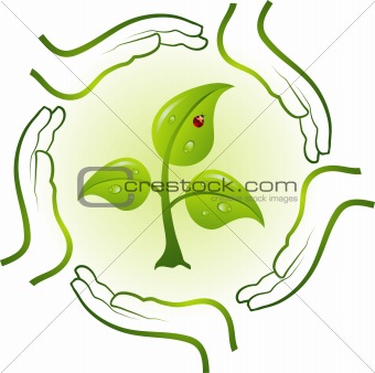 Green life in hands, vector