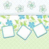 Template cards for the boy, vector
