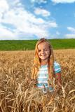 Golden hair girl on wheat field in late afternoon lights