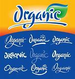 organic headlines, hand lettering set (vector)
