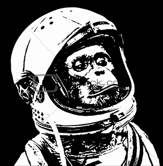 astronaut chimp