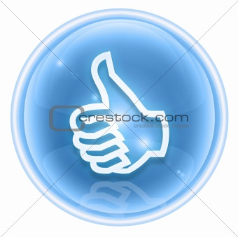 thumb up icon ice, approval Hand Gesture, isolated on white back