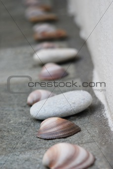 Arrangement Of Shells And Stones