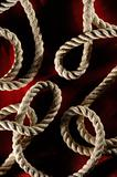 Abstract Ropes