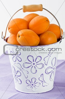 Apricot in white bucket