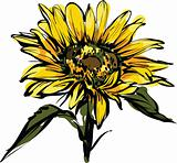 yellow sunflower design