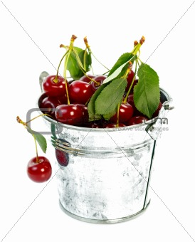 Pot with cherry