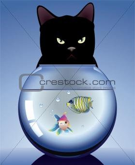 black cat and aquarium with fishes