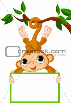 Baby monkey on a tree holding blank sign