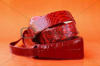 Women's Accessories red bag and a stylish belt