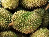 durians