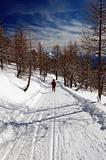 Woman snowshoeing descending