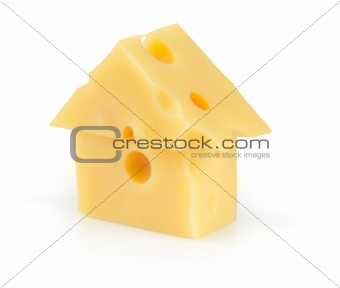 piece of yellow porous cheese