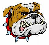 Mean bulldog mascot illustration