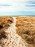 Denmark Dunes
