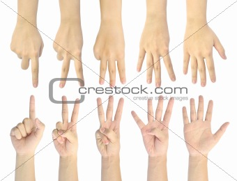 set counting number 1-5 of woman hand isolated on white background