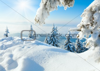 Winter snowy landscape