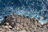 Wild sea and rocks