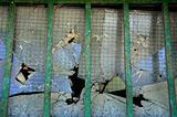 broken thick glass