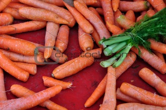 carrots and dill vegetables background