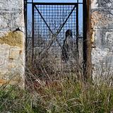 man behind vintage metal door