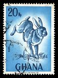 rabbit vintage postage stamp