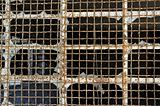 industrial window wire mesh