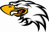 Eagle Mascot Head Graphic