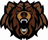 Bear Grizzly Mascot Head Graphic