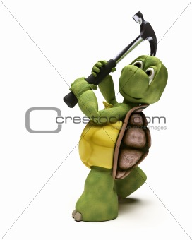 Tortoise with a claw hammer